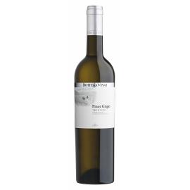 Pinot Grigio Trentino DOC Bottega Vinai